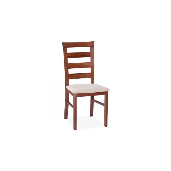 Jídelní židle Alcinia